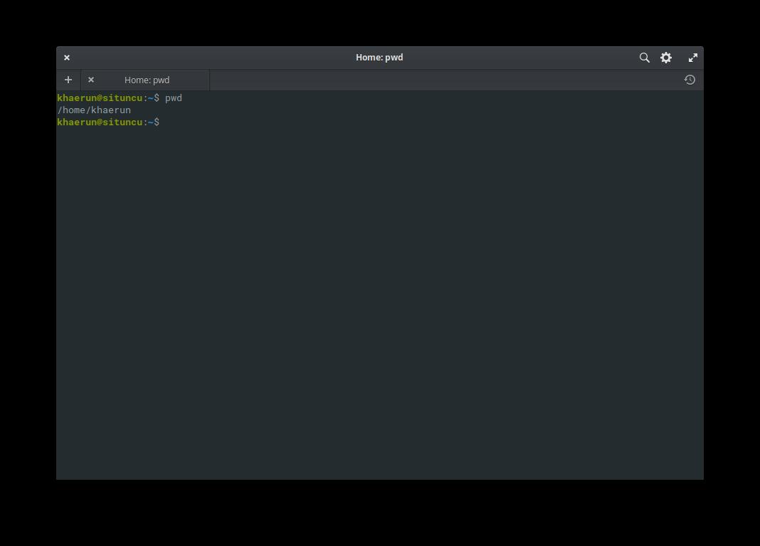 Gambar Perintah pwd di Terminal Linux