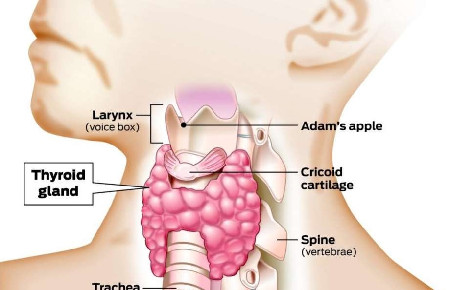 Papillary Thyroid Cancer Symptoms