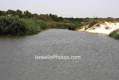 Nahal Poleg (Stream) Nature Reserve