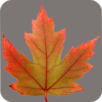 Alberta Wildflowers Apk free Download for Android