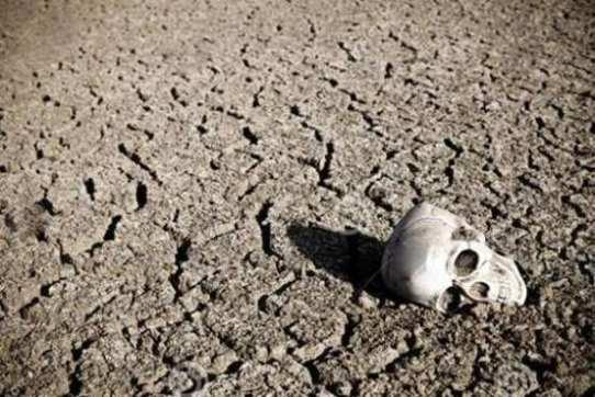 العلماء يتنبأون بـانقراض البشرية بعد...!