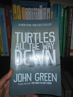 Turtles Book All The Way Down