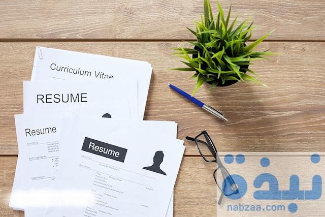 كيفيه عمل سيرة ذاتية احترافية من Styling CV لاقتناص وظيفة أحلامك