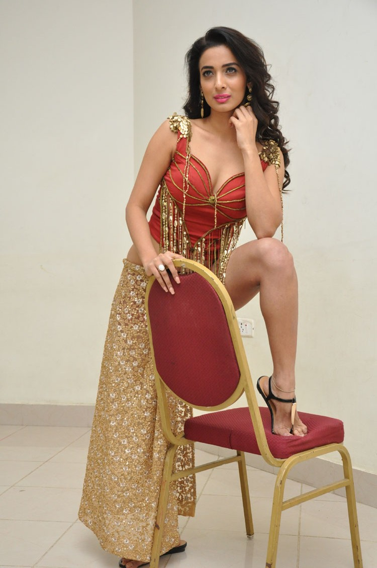 Heena Panchal New sizzling photo gallery-HQ-Photo-15