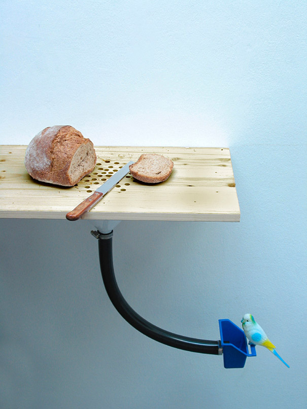 cutting board bird Feeder