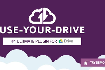Download Use-your-Drive v1.12.4.1 Free - Google Drive plugin for WordPress