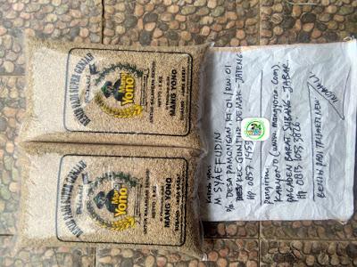 Benih padi yang dibeli M. SYAEFUDIN Demak, Jateng. (Sebelum packing karung ).