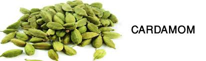 Agri commodity calls, Agri Commodity Tips, Cardamom Tips, Free  Commodity Tips, Free Agri Tips, MCX Tips Services,