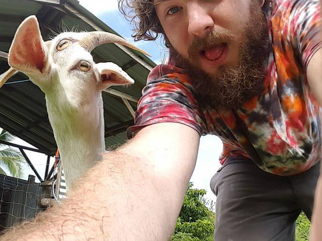 Don't use Panorama with a moving goat.
