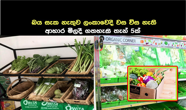 Organic Foods In Colombo, Sri Lanka