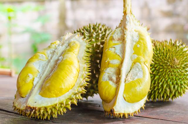 Berapa Harga Supplier Jual Durian Montong Manado, Sulawesi Utara