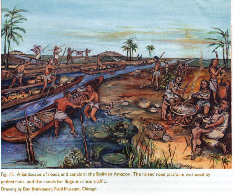 recreation of precolumbian Baure road/canal complex