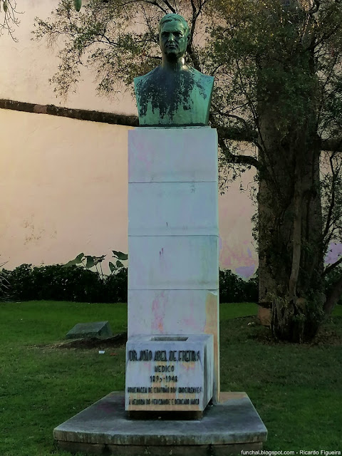 BUSTO DR. JOÃO ABEL DE FREITAS - FUNCHAL