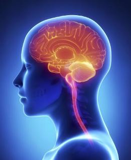 EERR, neurología, cerebro, hipertensión, enfermedad