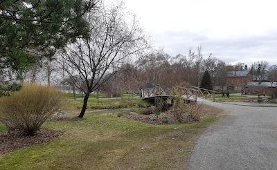 Puusilta Hatanpään Arboretumissa