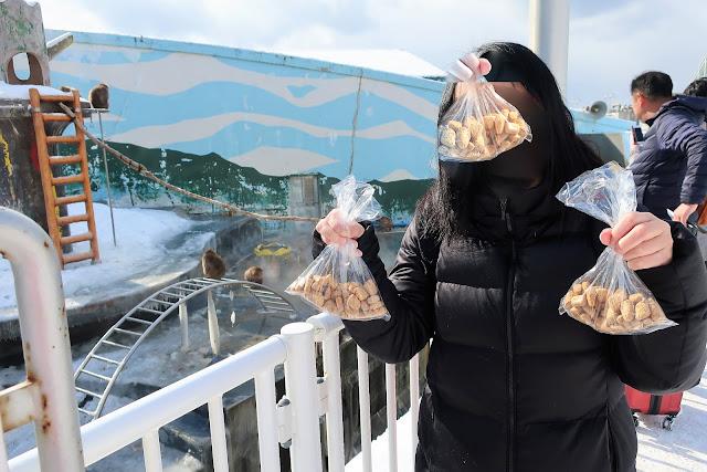 北海道 函館熱帯植物園 サル山温泉