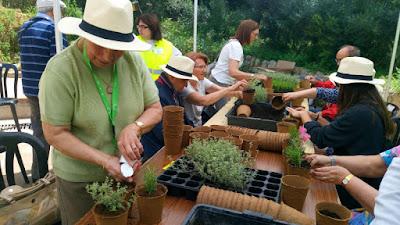 Terapia horticultura jardinería