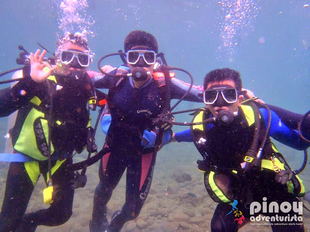 Where to Dive in the Philippines - Diving Spots