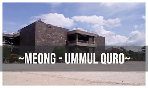 Lirik Lagu Meong - Ummul Quro