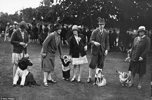 Vintage Fancy Dress Dogs