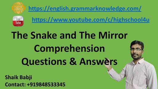 The Snake and The Mirror Comprehension