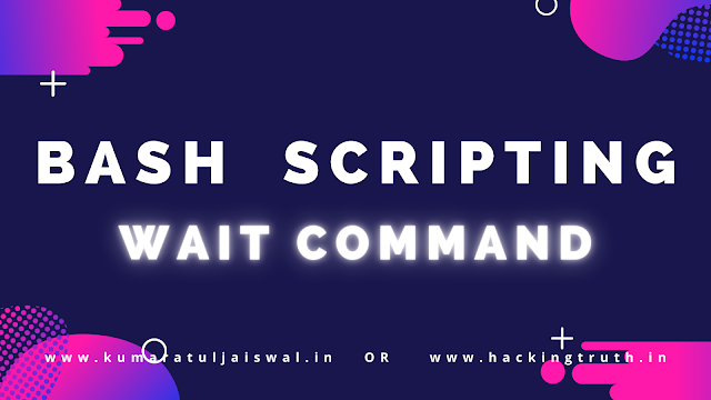 Bash Scripting Wait Command