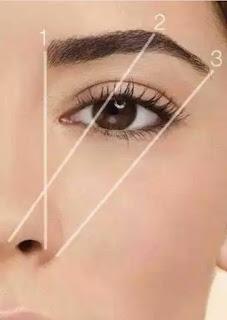 How to shape eyebrow, eyebrow shapes,
