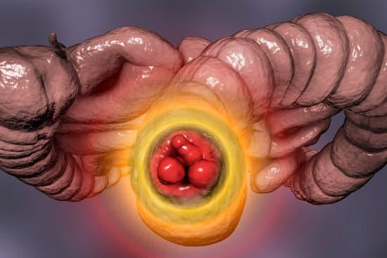 बवासीर को जड़ से खत्म करने के लिए प्राकृतिक आयुर्वेदिक उपचार