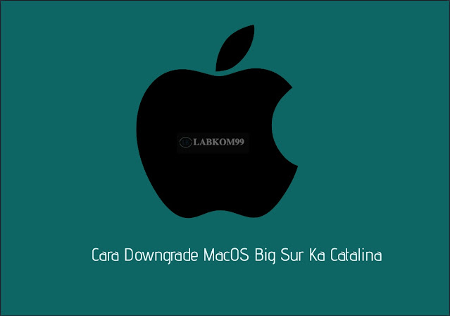 Cara Downgrade MacOS Big Sur Ka Catalina