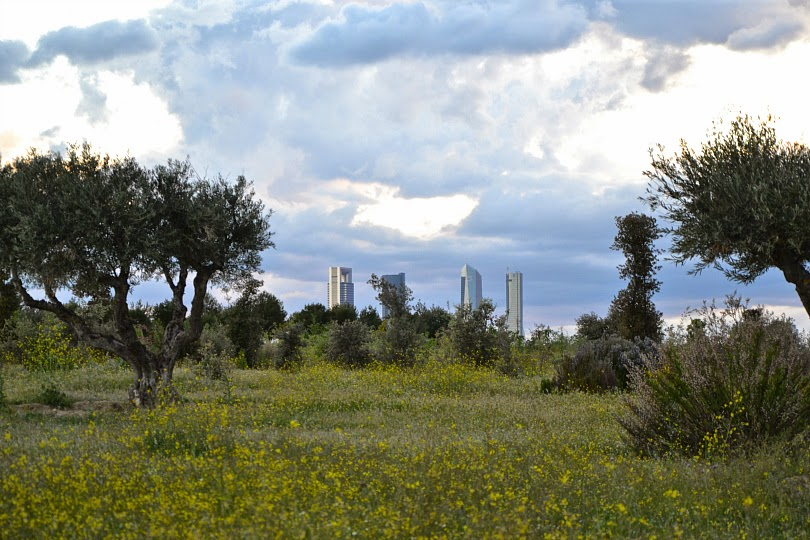 Vistas desde el Parque de Valdebebas