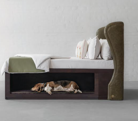Make way for your extended family with Gulmohar Lane's Wingback bed with Pet Cove