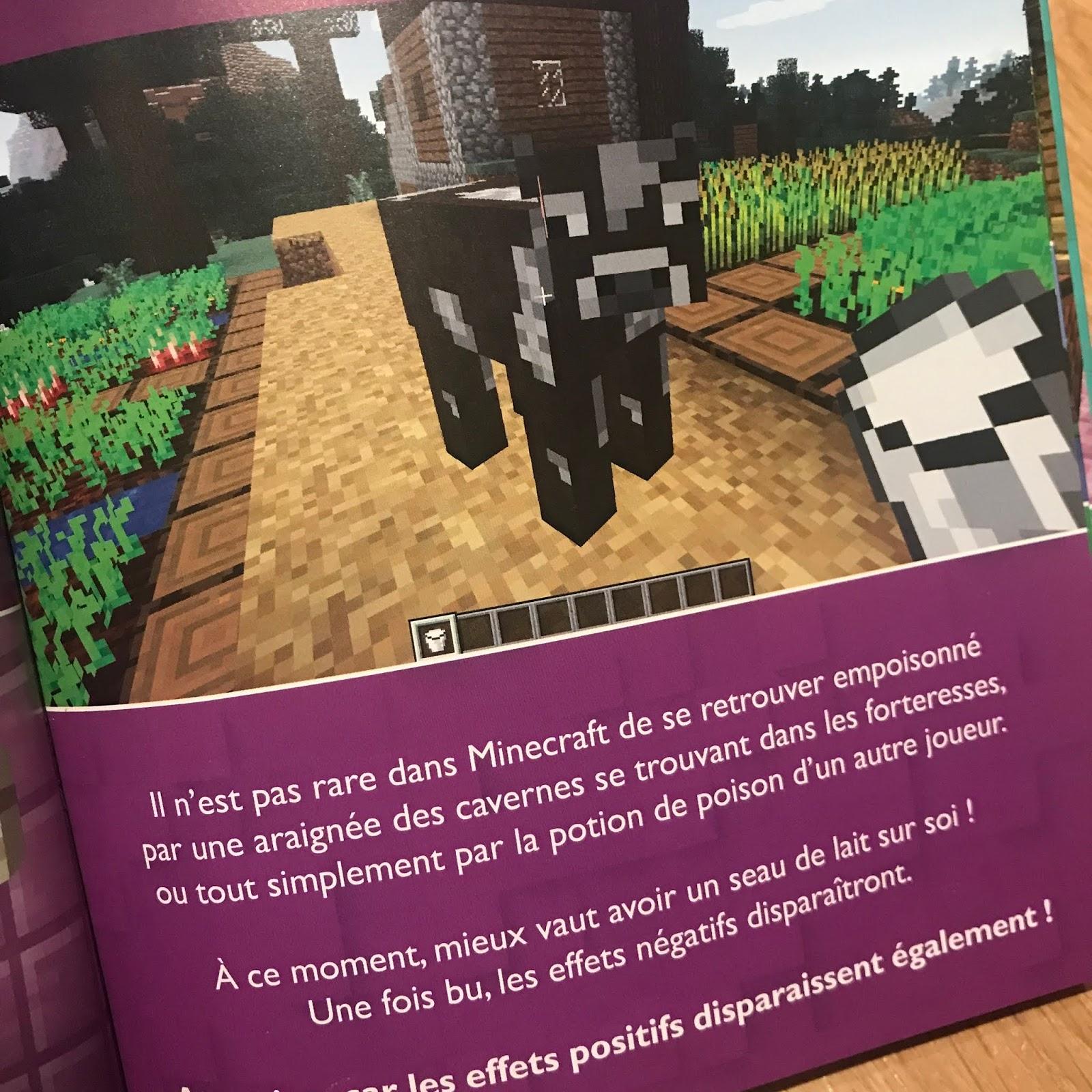 100 astuces Minecraft avec Frigiel et Fluffy*