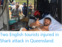 https://sciencythoughts.blogspot.com/2019/11/two-english-tourists-injured-in-shark.html