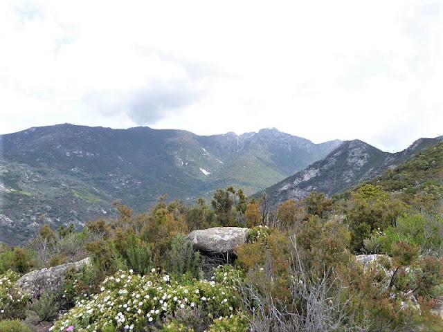 panorama sulla vallata del Monte Capanne