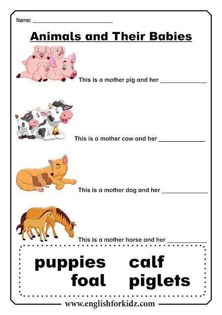 Animal babies - free printable ESL worksheets
