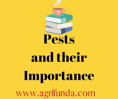 Pests and their Importance