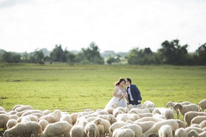 Evlenemiyoruz!