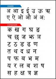 Not giving Hindi language preference is our biggest mistake-हिंदी को वरीयता ना देना हमारी सबसे बड़ी भूल, HINDI LANGUAGE