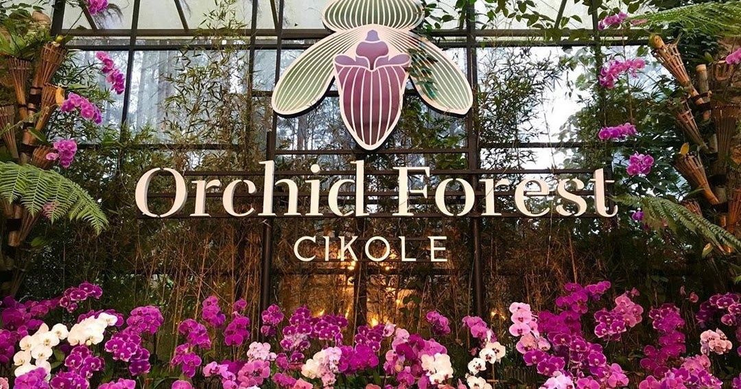 Orchid Forest Cikole Lembang Lokasi Harga Tiket Masuk