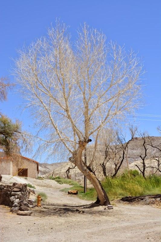 死谷國家公園 12