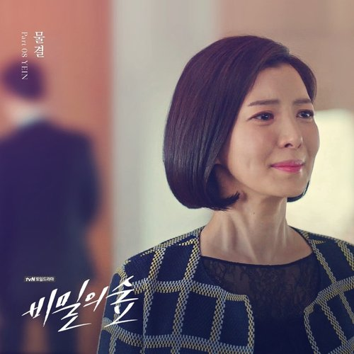 Download Lagu Soundtrack YEIN - Forest of Secrets Part.8