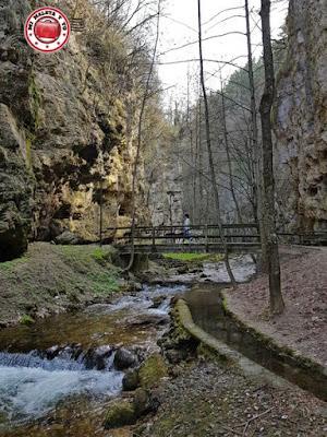 Orillas del río Sass en Fondo