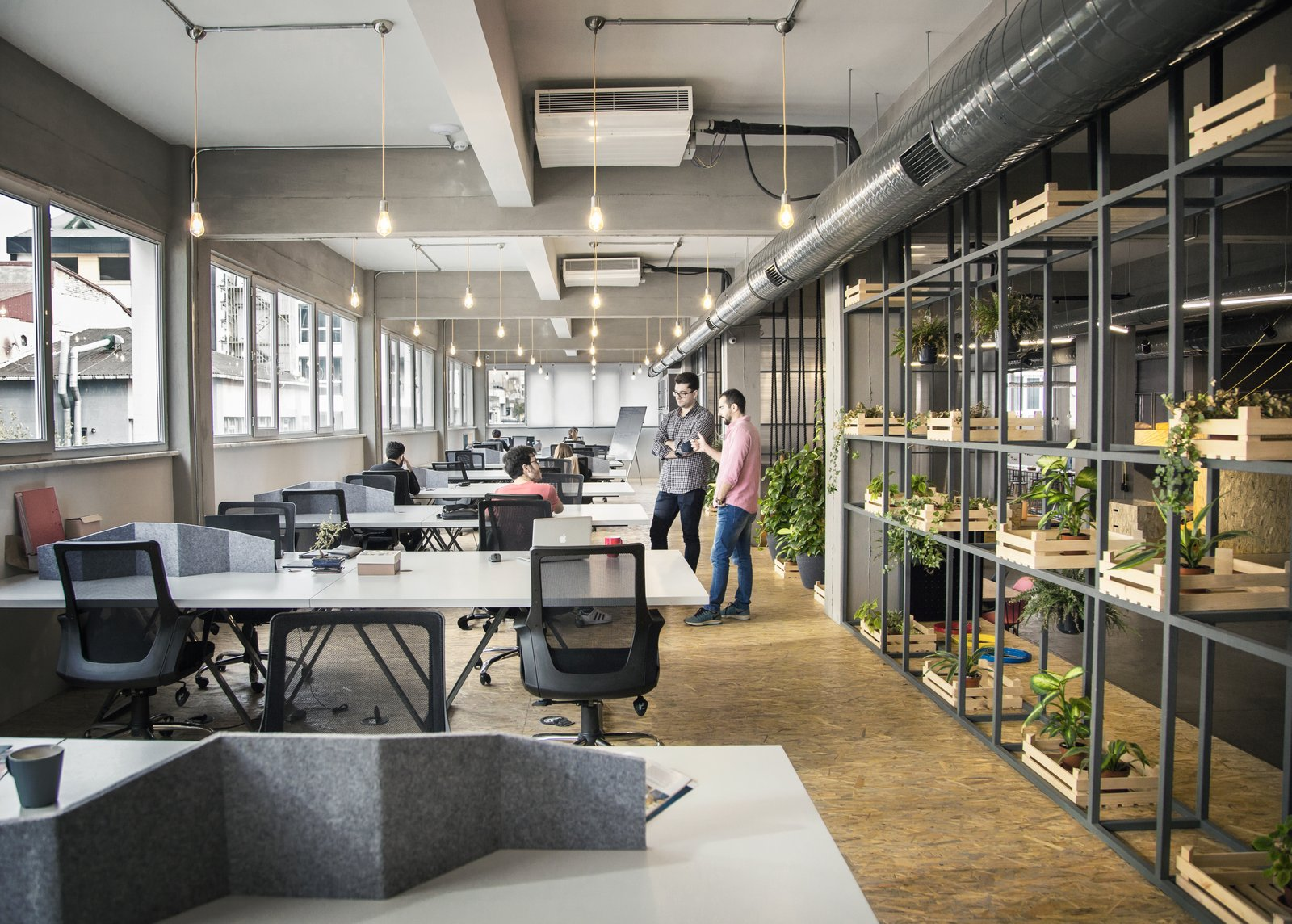 Cây xanh giúp văn phòng giảm bớt nguy cơ về bệnh