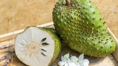 Durian Belanda atau Soursop Manfaat Bagi Kesehatan Tubuh
