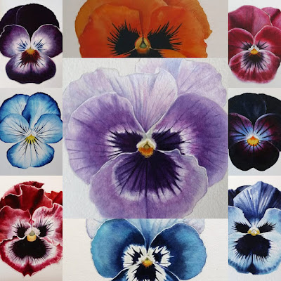 Botanical Art Pansy