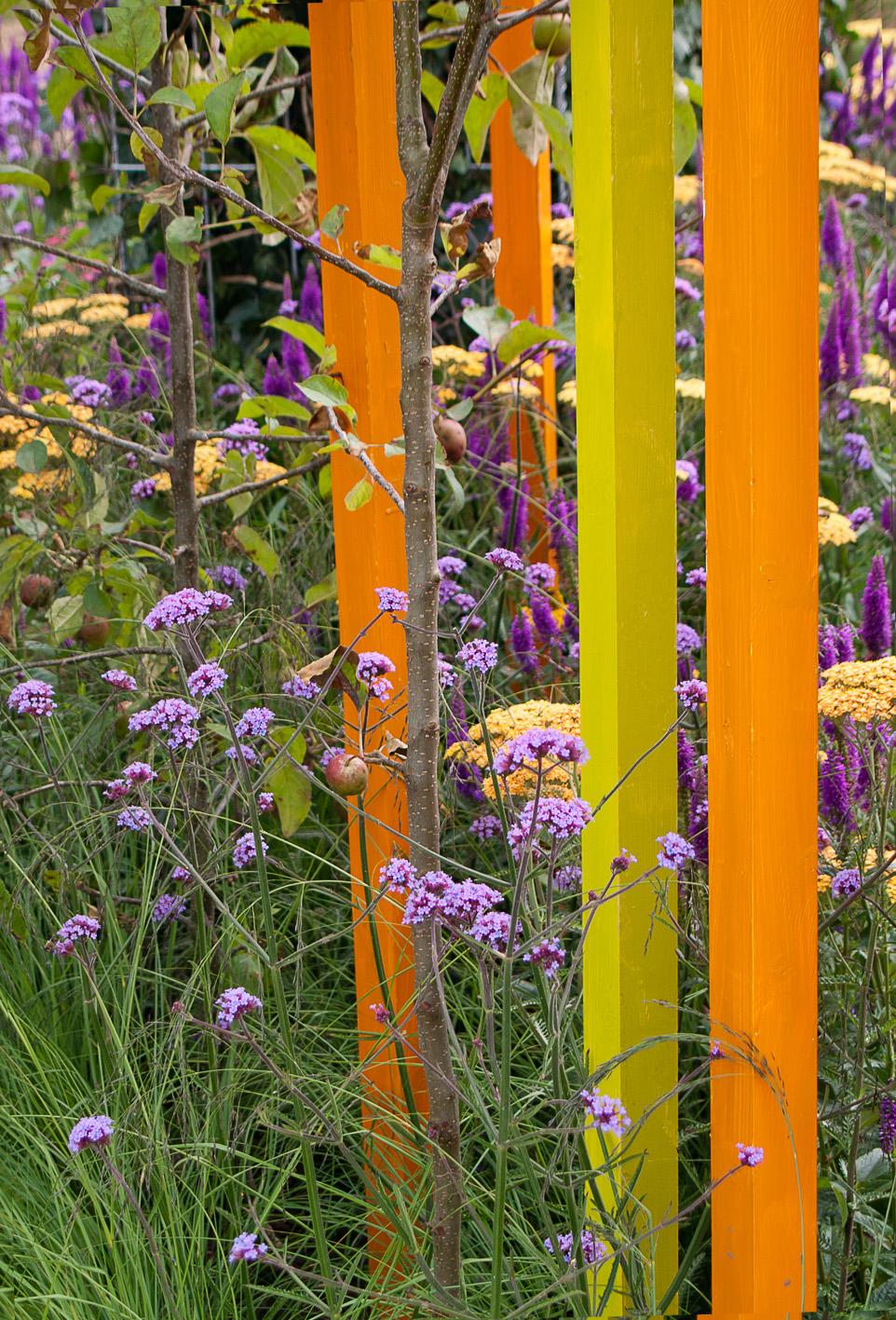 Garden65: July 2012