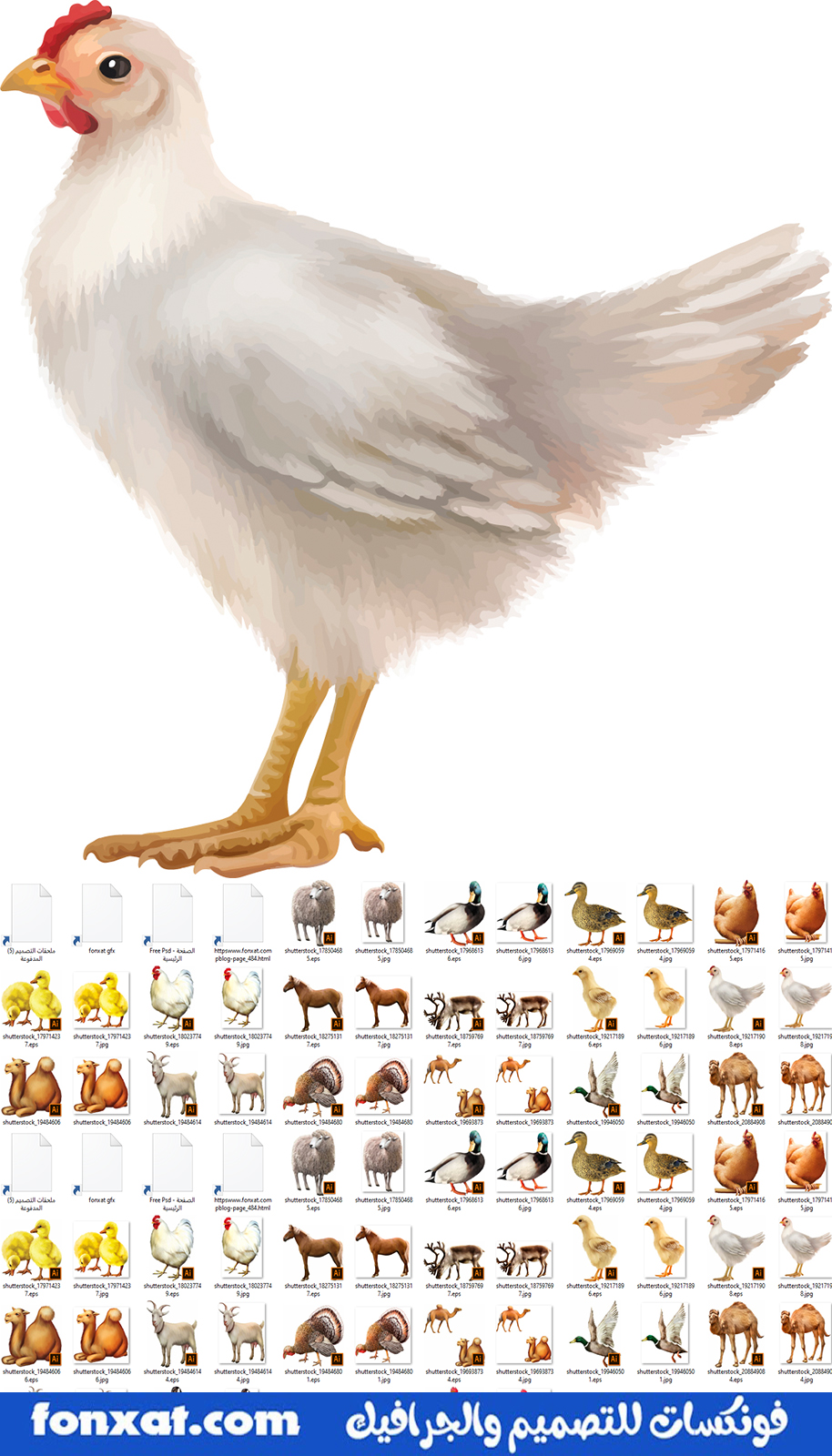Download pictures of birds and animal farms of the highest quality
