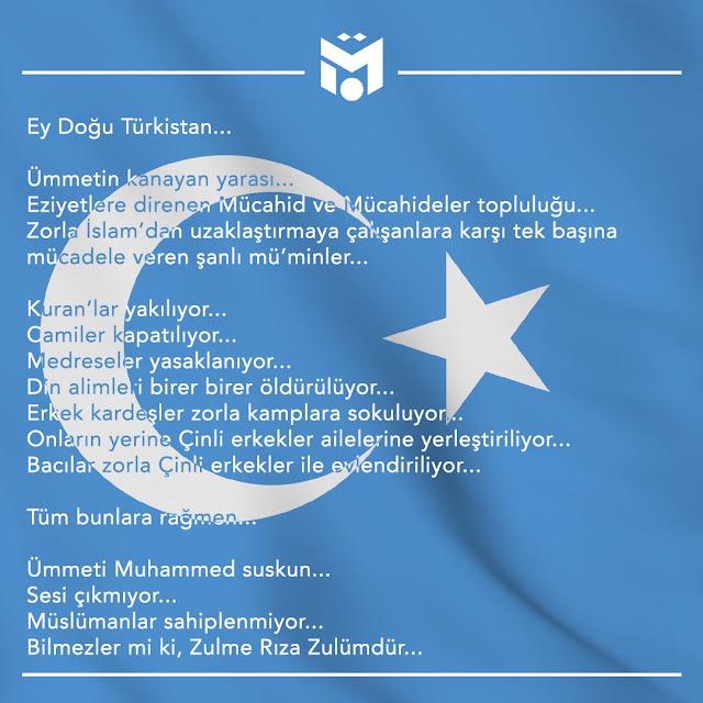 Ungkapan Mesut Ozil Uighur