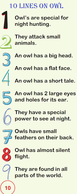 Few Lines on Owl