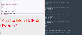 Apa Itu File (stdin) Di Python?